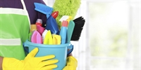 established residential cleaning biz - 1