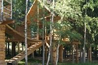 trees houses park suceava - 1