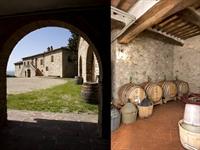 winery tuscany - 3
