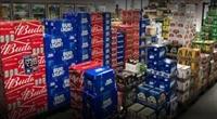 growing beverage distributor suffolk - 1