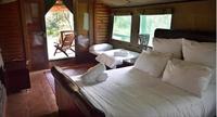 luxury safari tent camp - 3