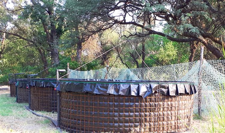 aquaculture fish farm namibia - 5