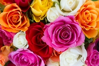 luxury modern flower gift - 1