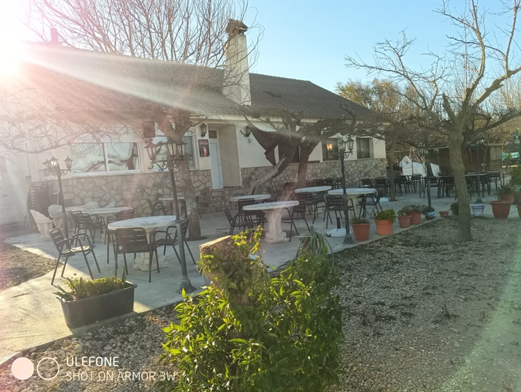 successful beachfront restaurant the - 10