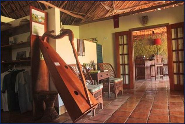 belize tropical jungle resort - 8