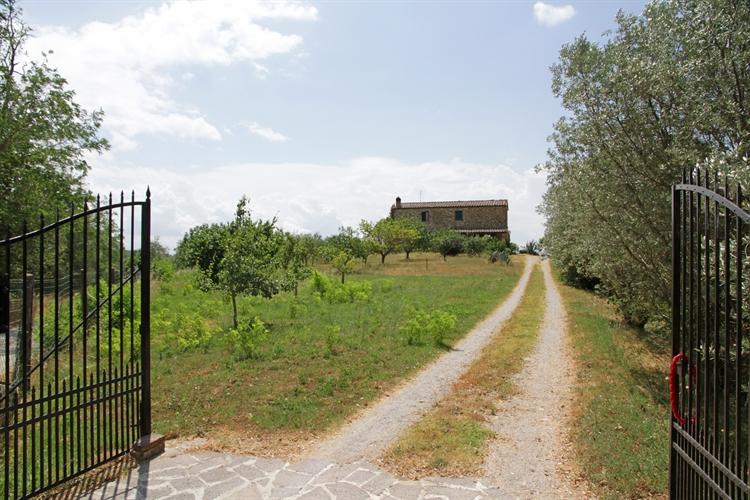 farm asciano for sale - 11
