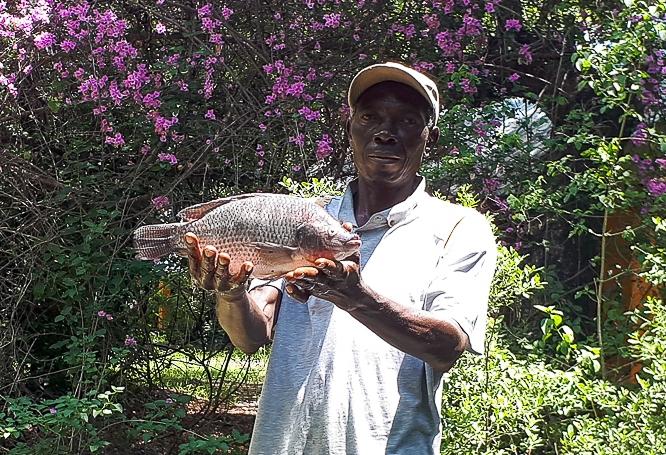 fish farm namibia for - 5