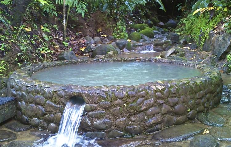 tropical nature retreat lodge - 10