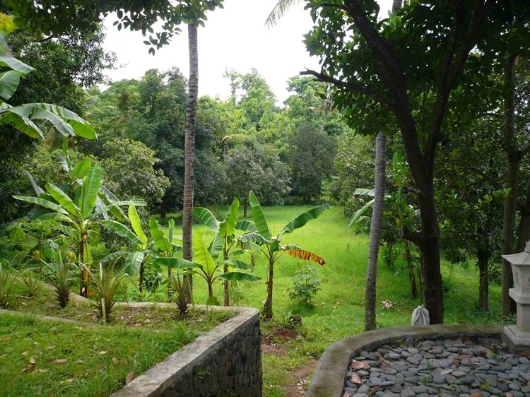 lush green bungalow resort - 6