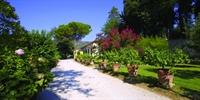 luxury holiday villa cortona - 2