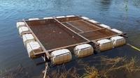 aquaculture fish farm namibia - 2
