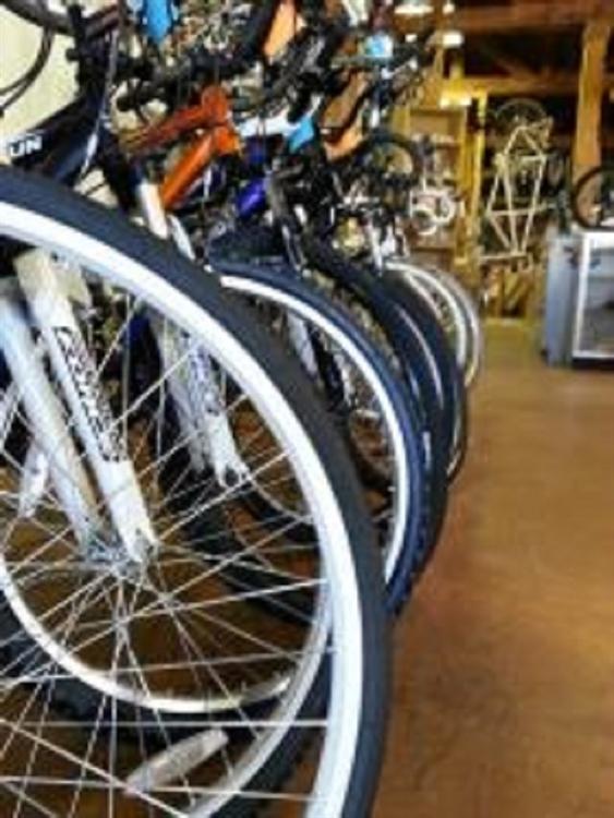 bike shop suffolk county - 4