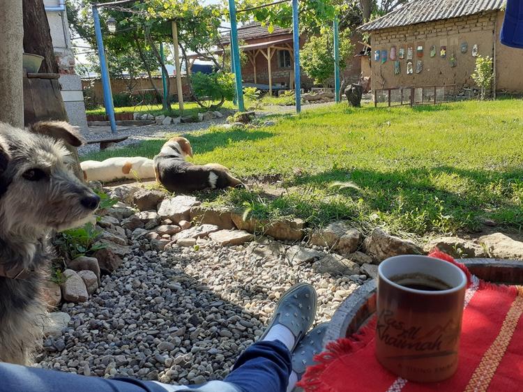 campsite rural retreat khaskovo - 13