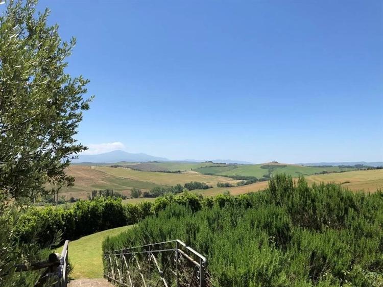 estate farm montalcino for - 15