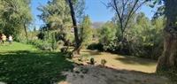 campsite ronda area malaga - 3