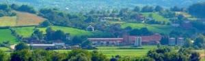 winery vineyards - 8