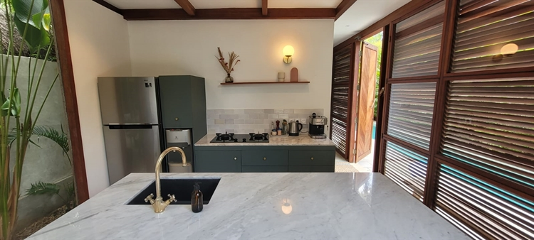 luxury tropical villa business - 7