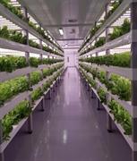 vertical farming franchise investment - 1