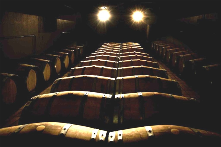 winery montalcino for sale - 6