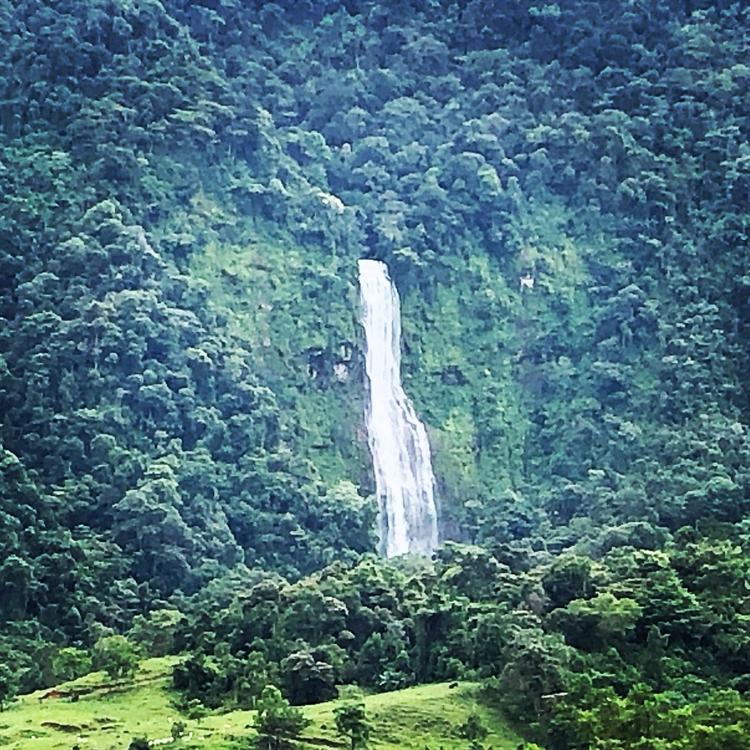 tropical nature retreat lodge - 15