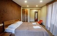 popular hotel bakuriani - 3