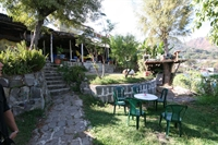 restaurant - 3