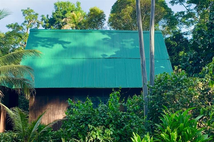 ecolodge 117 acres rainforest - 5