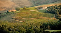 winery montalcino for sale - 3
