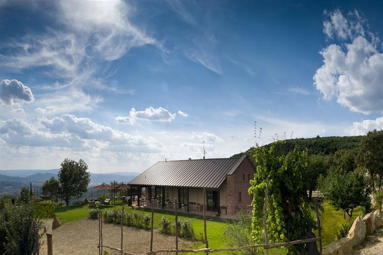 winery tuscany - 4