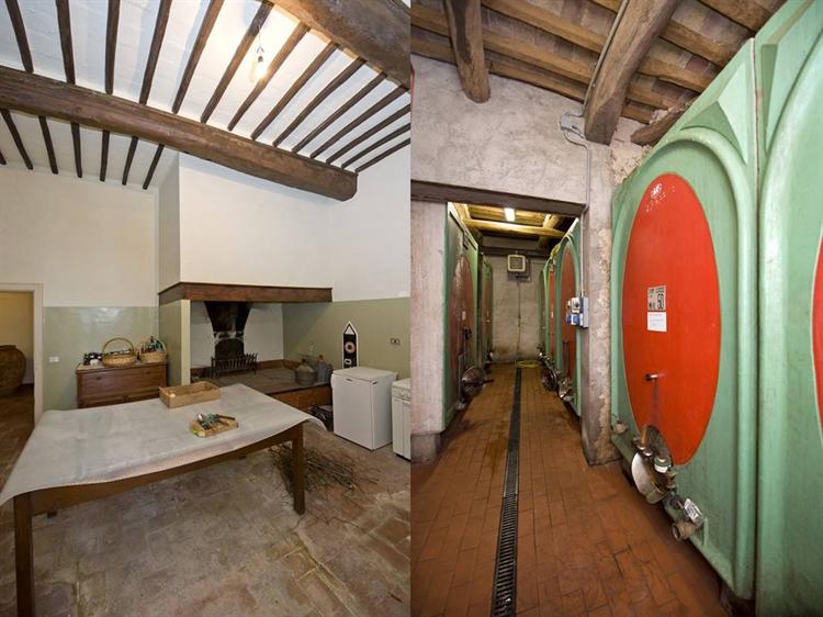 winery tuscany - 5
