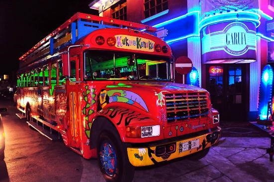 established profitable nightlife buses - 5