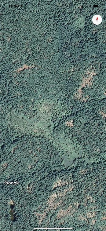 10 acres of eco - 2