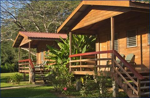 belize tropical jungle resort - 4