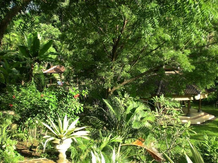 lush green bungalow resort - 10