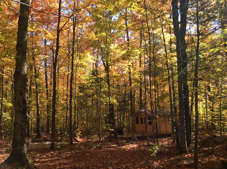 successful madawaska wilderness retreat - 15