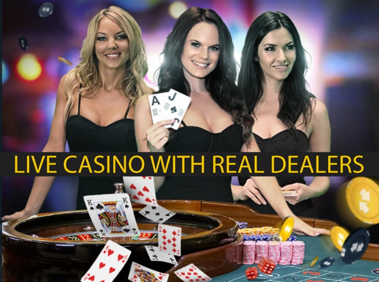 online casino franchise review