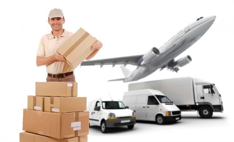 booming transport courier business - 5