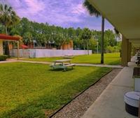 52 room hotel florida - 3