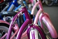 bike shop suffolk county - 3
