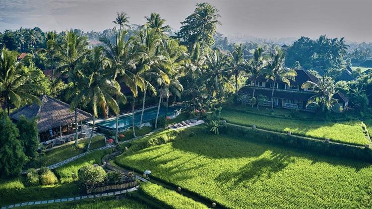 hotel resort ubud bali - 10