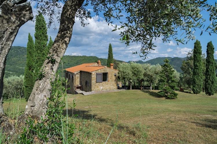 estate tuscany - 5