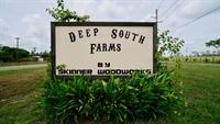 organic ranch farm property - 1