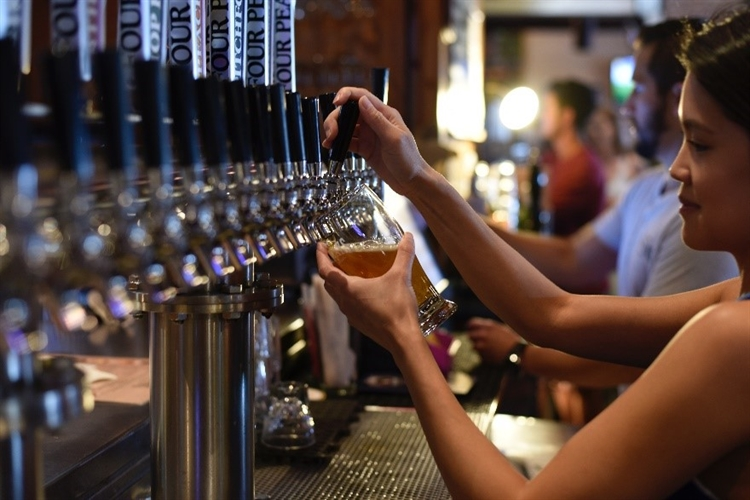 Buy a Craft Beer Pub Franchise In Hawaii business for sale