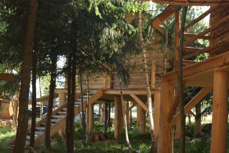 trees houses park suceava - 5