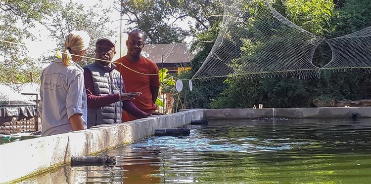 fish farm namibia for - 9