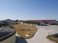 agricultural farm zootechnical farm - 3