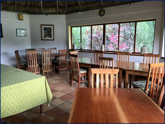 belize tropical jungle resort - 7