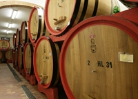 wine farm for sale - 3