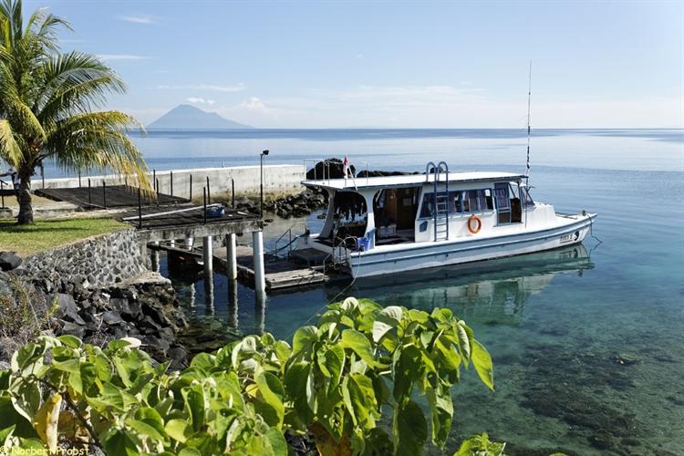 Buy An Unique Oceanfront Dive Resort In Manado North Sulawesi