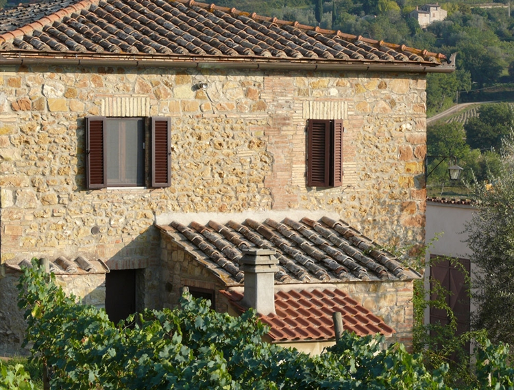 wine farm for sale - 6